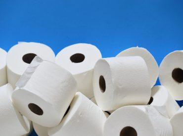Rouleaux de papier toilette
